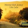 Never Got Away (Single) Colbie Caillat