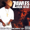 The I'm Holding (Single) Zawles