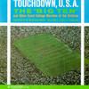 Touchdown, U.S.A. University Of Michigan Band