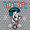 Cat Fight (Over A Dog Like Me) Stray Cats