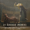 Show Me Love (Remix) (feat. 21 Savage & Miguel) Alicia Keys