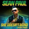 She Doesn't Mind (Pitbull Remix) Sean Paul