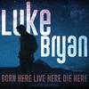 Drink A Little Whiskey Down Luke Bryan