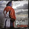 El Mariel Pitbull