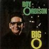 The Big O Roy Orbison