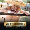 Háblame Vicente Fernandez