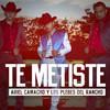 Te Metiste (Single) Los Plebes Del Rancho de Ariel Camacho