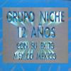 12 Anos Grupo Niche