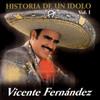 La Historia De Un Idolo Vicente Fernandez