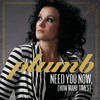 Need You Now (How Many Times) (Single) Plumb