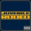Rodeo (Single) Juvenile
