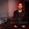 What She Wants Tonight Luke Bryan