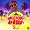 Mix It Down Wayne Wonder