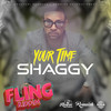 Your Time (Single) Shaggy