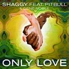 Only Love (Single) Shaggy