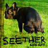 Seether: 2002-2013 Seether