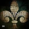 The Fundamentals Juvenile