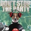 Don't Stop The Party Various Artists