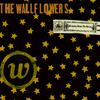 Bringing Down The Horse The Wallflowers
