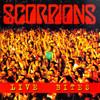 Live Bites Scorpions