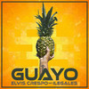Guayo (feat. Ilegales) Elvis Crespo