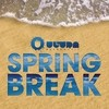 Ultra Spring Break Various Artists