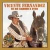 De Un Rancho A Otro Vicente Fernandez
