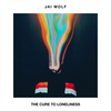 The Cure To Loneliness Jai Wolf