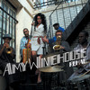 Rehab (Remixes & B Sides) Amy Winehouse