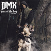 Year Of The Dog, Again DMX