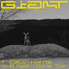 Giant (with Rag'n'Bone Man) Calvin Harris