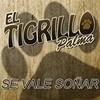 Se Vale Sonar (Singel) El Tigrillo Palma