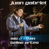 Mis 40 En Bellas Artes Juan Gabriel