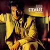 Human Rod Stewart
