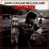 Scarecrow John Mellencamp