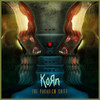 The Paradigm Shift Korn