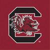 University of South Carolina University of South Carolina