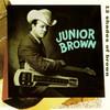 12 Shades Of Brown Junior Brown