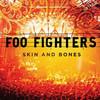 Skin And Bones Foo Fighters