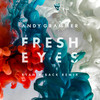 Fresh Eyes (Single) Andy Grammer