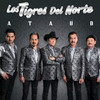 Ataúd (Single) Los Tigres Del Norte