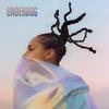 Underdog (Nicky Jam & Rauw Alejandro Remix) Alicia Keys