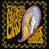 The Lost Crowes Black Crowes